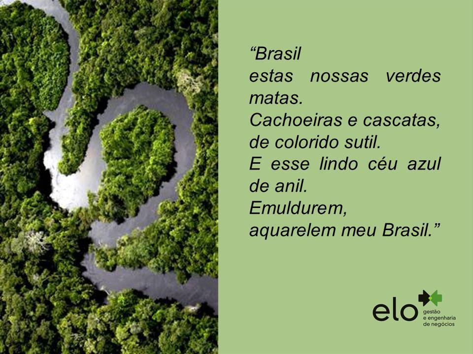 Brasil estas nossas verdes matas. Cachoeiras e cascatas, de colorido sutil. E esse lindo céu azul de anil. Emuldurem, aquarelem meu Brasil.
