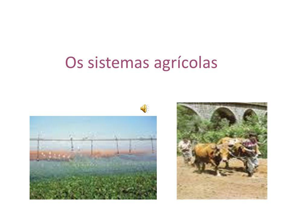 Os sistemas agrícolas