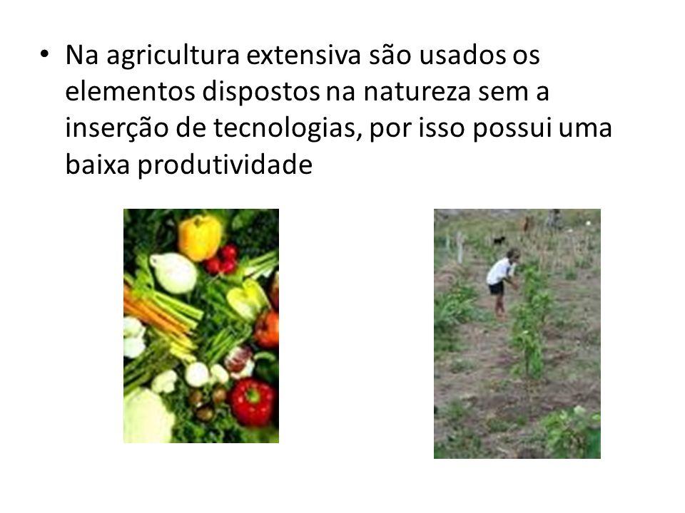 Na agricultura extensiva são usados os elementos dispostos na natureza sem a inserção de tecnologias, por isso possui uma baixa produtividade