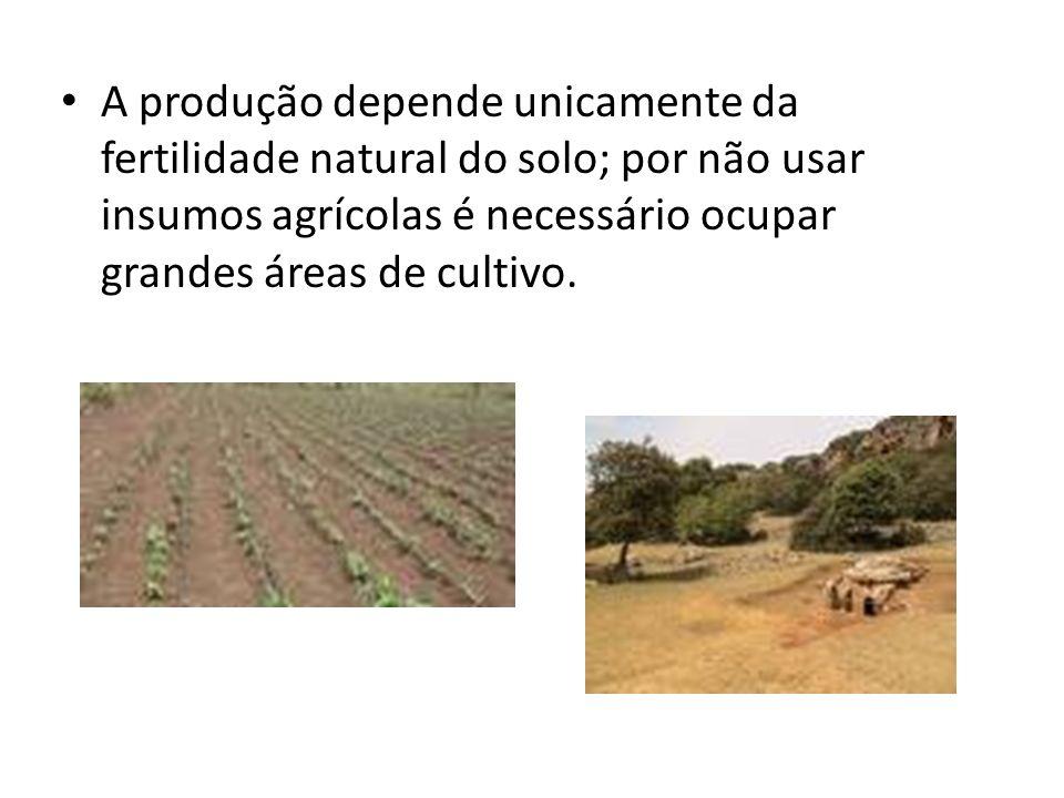A produção depende unicamente da fertilidade natural do solo; por não usar insumos agrícolas é necessário ocupar grandes áreas de cultivo.