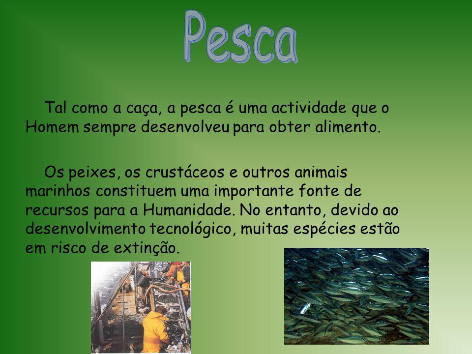 A forma de obtenção de produtos de origem animal, através da caça, predominou vários milénios. Actualmente existem em vários países reservas de caça,