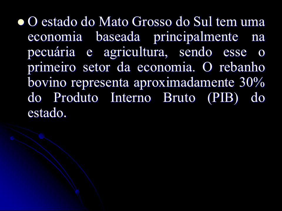 O estado do Mato Grosso do Sul tem uma economia baseada principalmente na pecuária e agricultura, sendo esse o primeiro setor da economia.