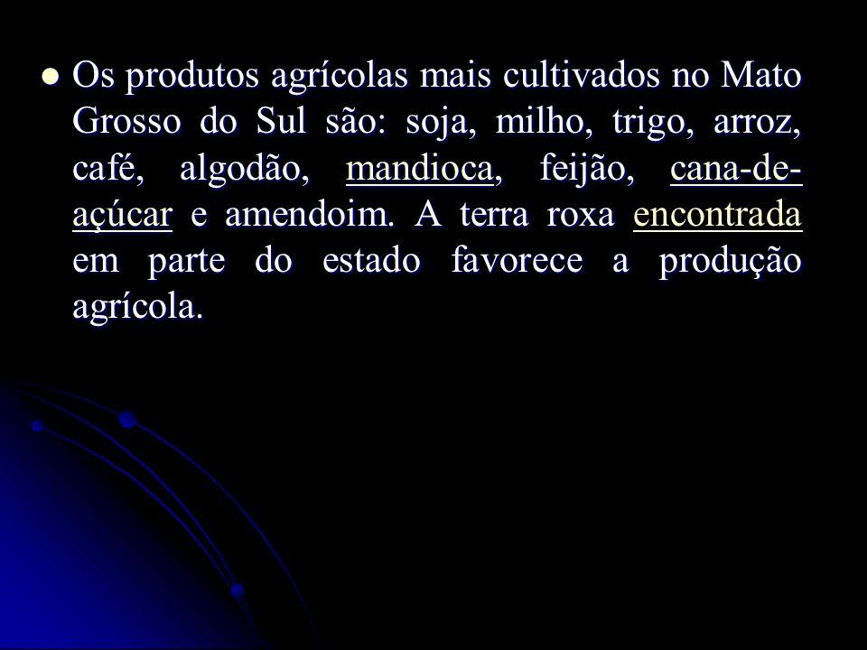 Os produtos agrícolas mais cultivados no Mato Grosso do Sul são: soja, milho, trigo, arroz, café, algodão, mandioca, feijão, cana-de- açúcar e amendoim.