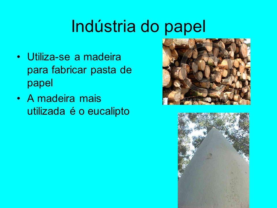 Indústria do papel Utiliza-se a madeira para fabricar pasta de papel A madeira mais utilizada é o eucalipto