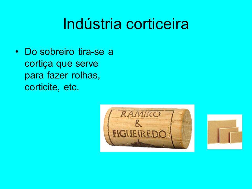 Indústria corticeira Do sobreiro tira-se a cortiça que serve para fazer rolhas, corticite, etc.