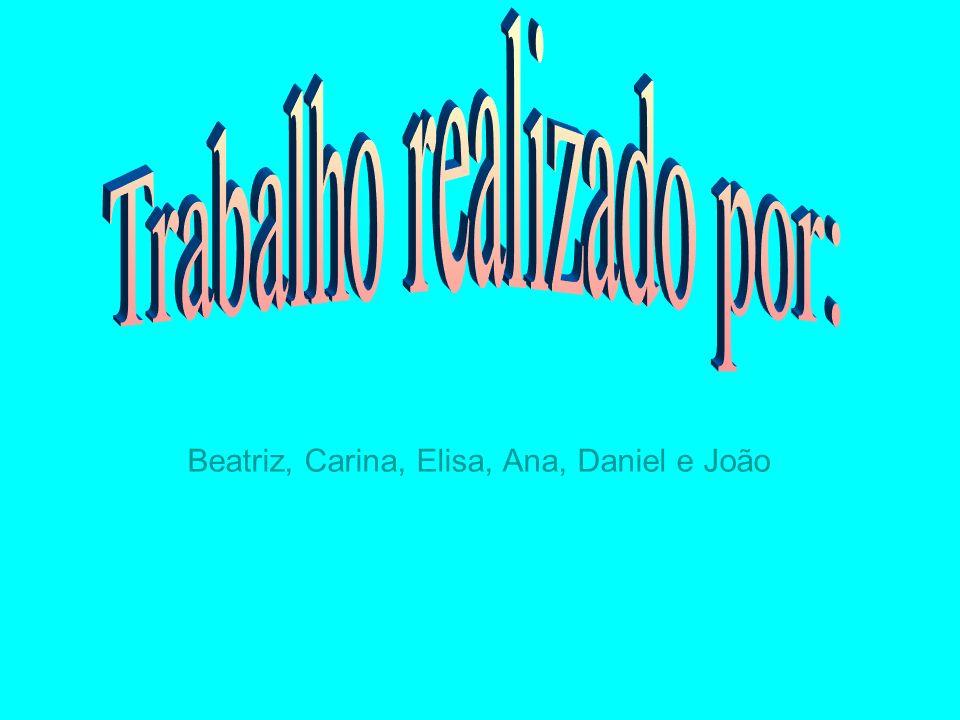 Beatriz, Carina, Elisa, Ana, Daniel e João