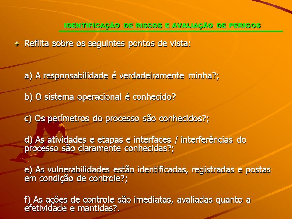 IDENTIFICAÇÃO DE RISCOS E AVALIAÇÃO DE PERIGOS Reflita sobre os seguintes pontos de vista: a) A responsabilidade é verdadeiramente minha?; b) O sistem