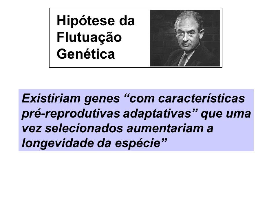 Hipótese da Flutuação Genética Existiriam genes com características pré-reprodutivas adaptativas que uma vez selecionados aumentariam a longevidade da
