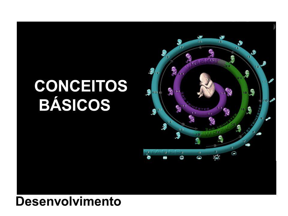 CONCEITOS BÁSICOS Desenvolvimento