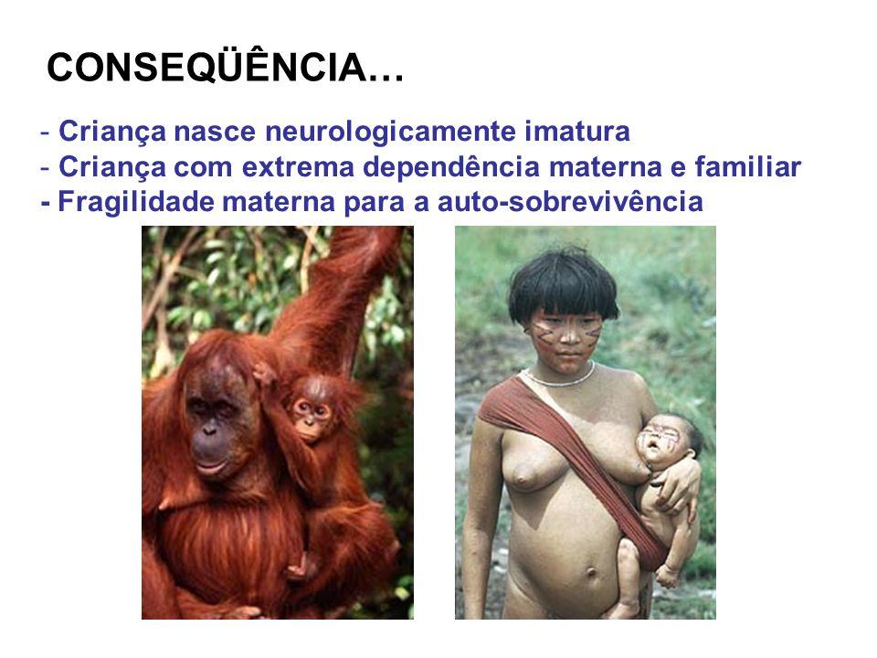 - Criança nasce neurologicamente imatura - Criança com extrema dependência materna e familiar - Fragilidade materna para a auto-sobrevivência CONSEQÜÊ
