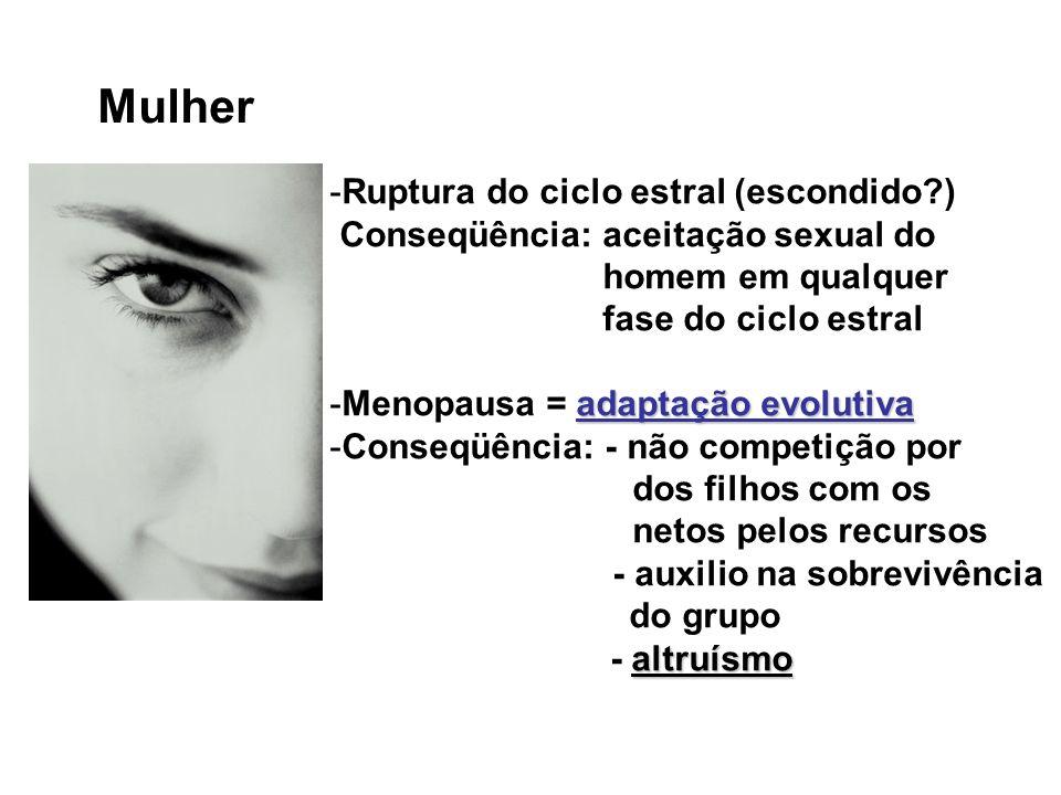 Mulher -Ruptura do ciclo estral (escondido?) Conseqüência: aceitação sexual do homem em qualquer fase do ciclo estral adaptação evolutiva -Menopausa =