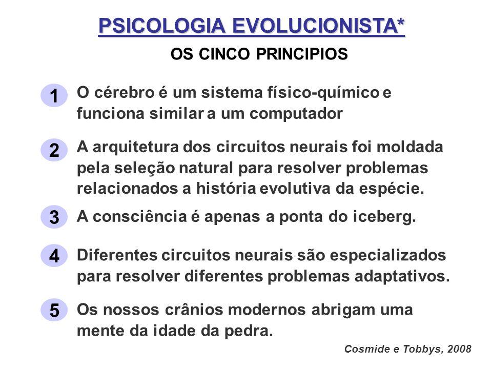 PSICOLOGIA EVOLUCIONISTA* OS CINCO PRINCIPIOS Cosmide e Tobbys, 2008 1 O cérebro é um sistema físico-químico e funciona similar a um computador 2 A ar
