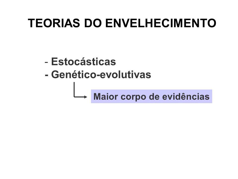 TEORIAS DO ENVELHECIMENTO - Estocásticas - Genético-evolutivas Maior corpo de evidências