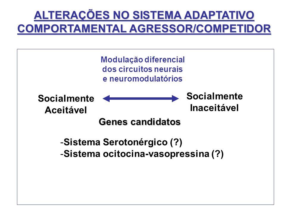 ALTERAÇÕES NO SISTEMA ADAPTATIVO COMPORTAMENTAL AGRESSOR/COMPETIDOR Genes candidatos Socialmente Aceitável Socialmente Inaceitável Modulação diferenci