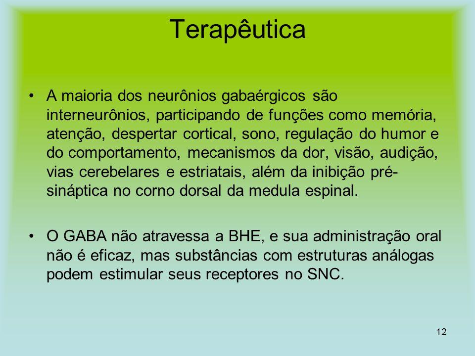 12 Terapêutica A maioria dos neurônios gabaérgicos são interneurônios, participando de funções como memória, atenção, despertar cortical, sono, regula