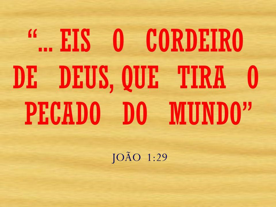 ... EIS O CORDEIRO DE DEUS, QUE TIRA O PECADO DO MUNDO JOÃO 1:29