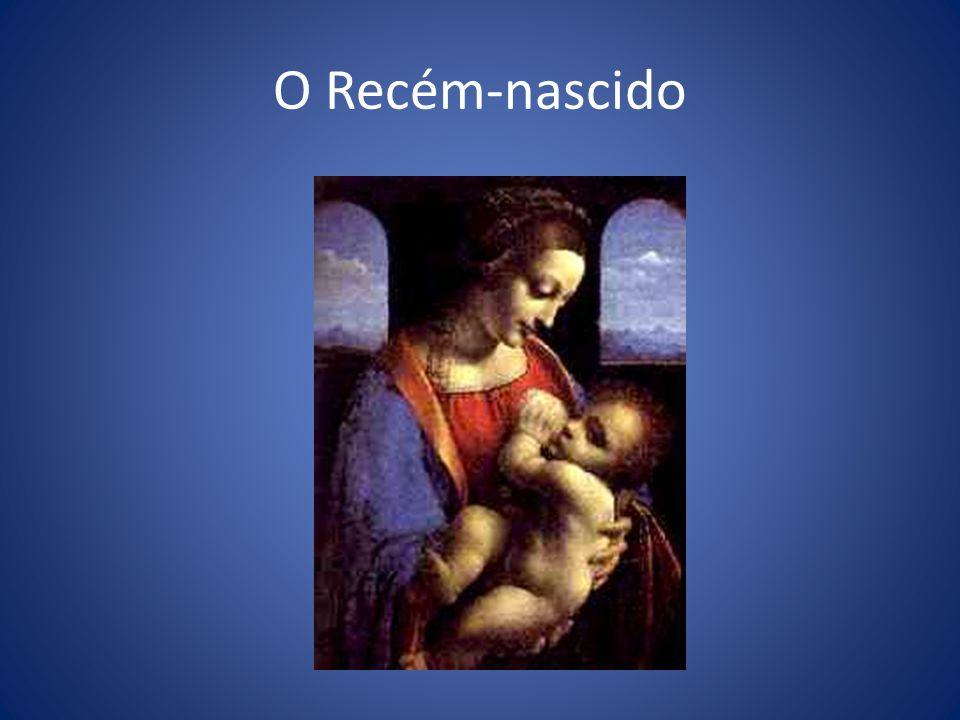 O Recém-nascido