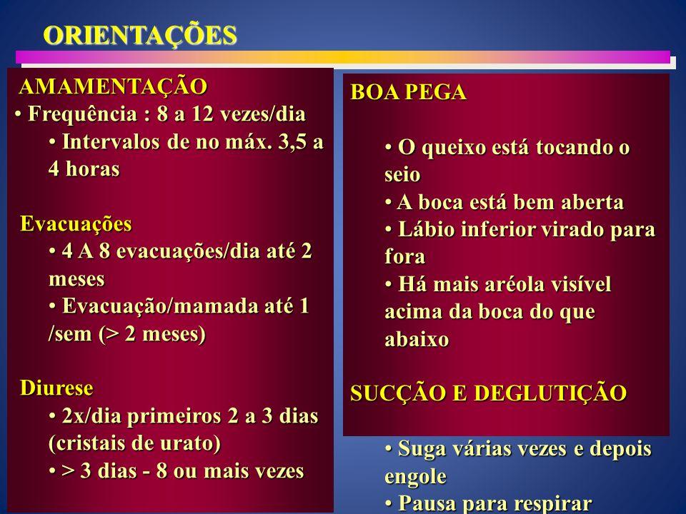 ORIENTAÇÕES AMAMENTAÇÃO AMAMENTAÇÃO Frequência : 8 a 12 vezes/dia Frequência : 8 a 12 vezes/dia Intervalos de no máx.