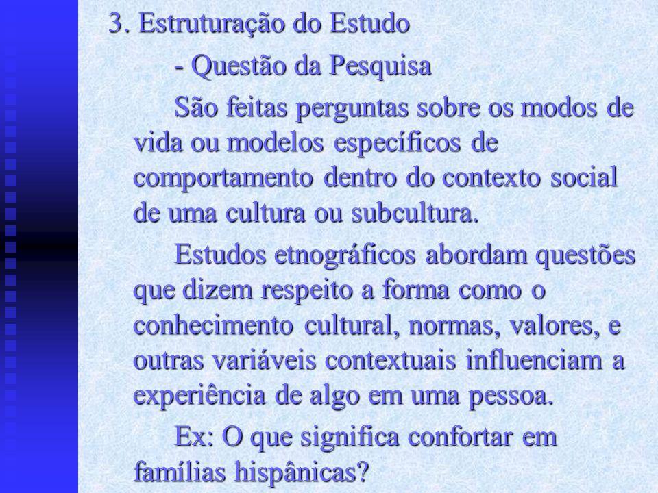 3. Estruturação do Estudo - Questão da Pesquisa São feitas perguntas sobre os modos de vida ou modelos específicos de comportamento dentro do contexto