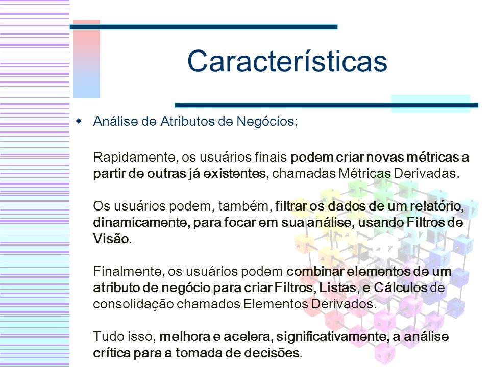 Características Análise de Atributos de Negócios; Rapidamente, os usuários finais podem criar novas métricas a partir de outras já existentes, chamada