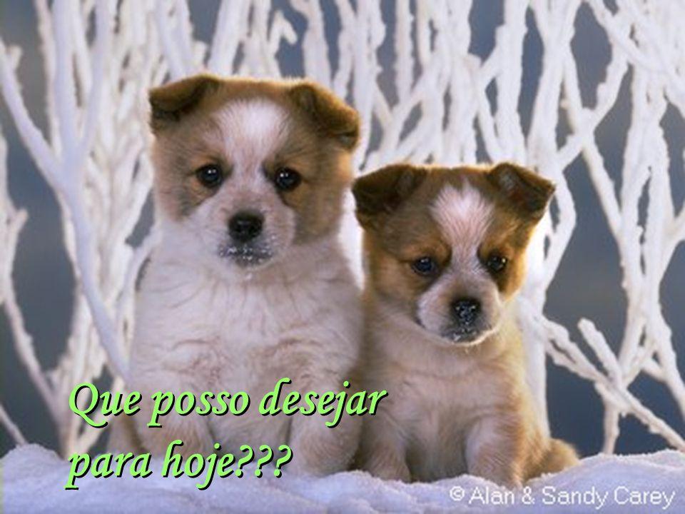 Facilitador:http://www.esoterikha.com Que as verdadeiras amizades continuem eternas...