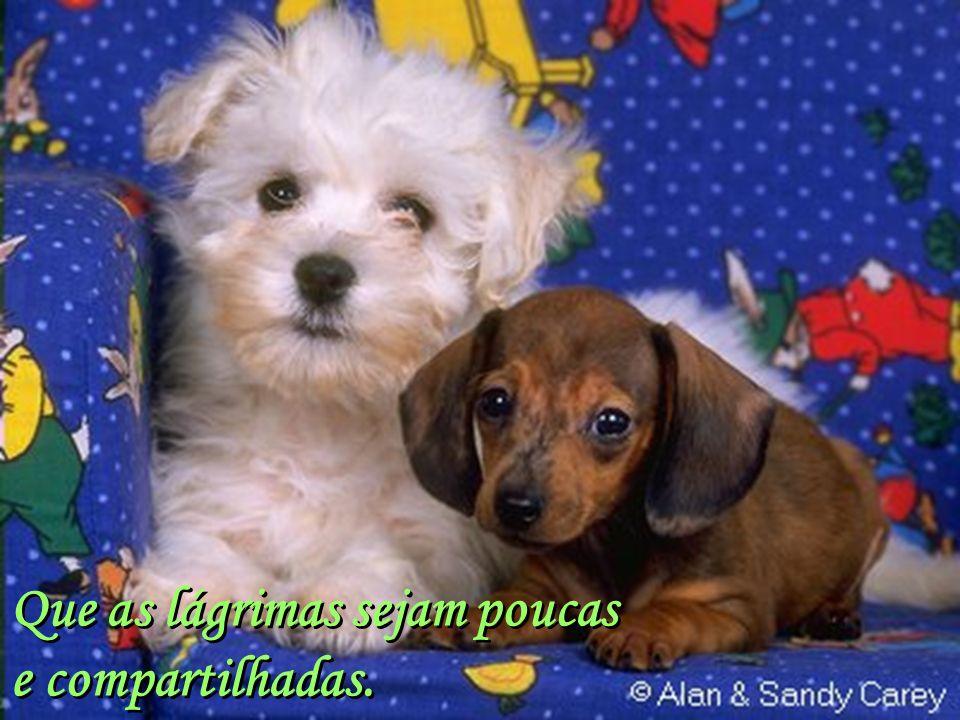 Facilitador:http://www.esoterikha.com Que as alegrias estejam sempre presentes...