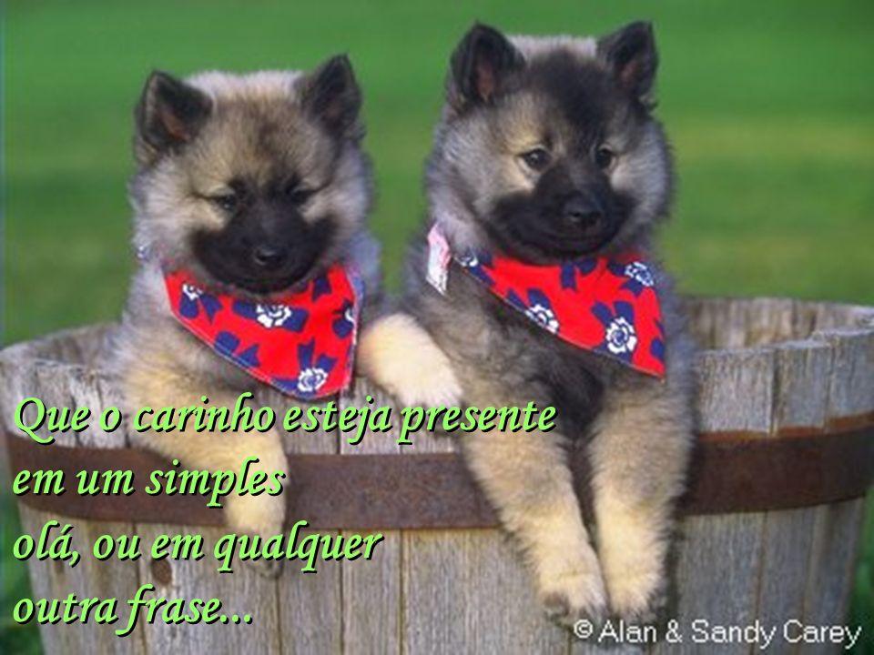 Facilitador:http://www.esoterikha.com Que o amor pelo próximo seja nossa meta absoluta.