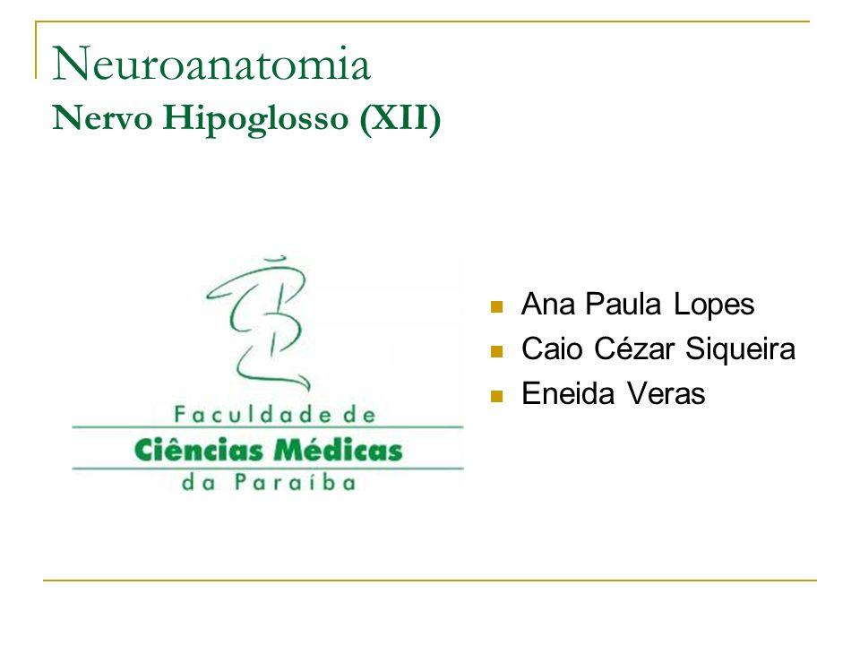 Neuroanatomia Nervo Hipoglosso (XII) Ana Paula Lopes Caio Cézar Siqueira Eneida Veras