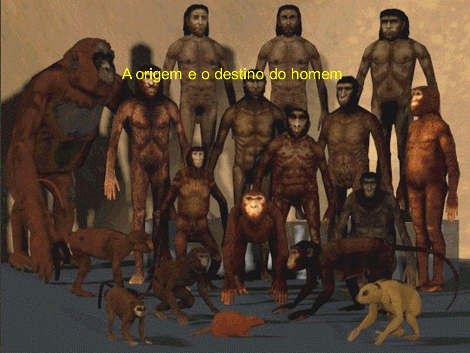 A origem e o destino do homem