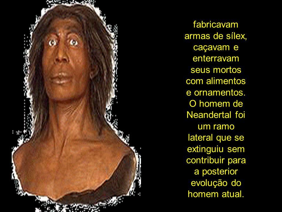 fabricavam armas de sílex, caçavam e enterravam seus mortos com alimentos e ornamentos. O homem de Neandertal foi um ramo lateral que se extinguiu sem
