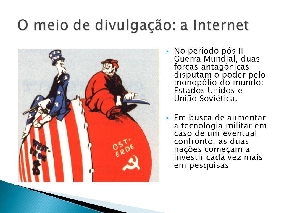 Vinte e cinco por cento dos brasileiros acima de 10 anos acessam a internet todos os dias.
