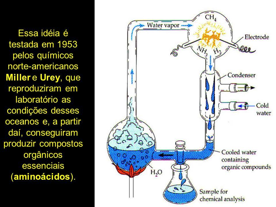 Essa idéia é testada em 1953 pelos químicos norte-americanos Miller e Urey, que reproduziram em laboratório as condições desses oceanos e, a partir da