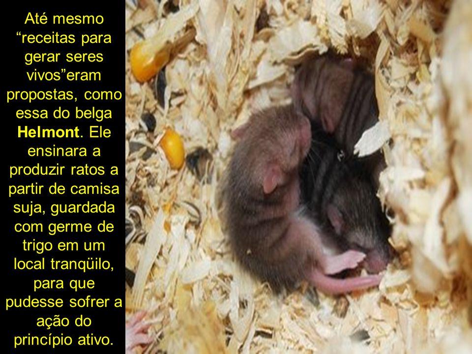 Até mesmo receitas para gerar seres vivoseram propostas, como essa do belga Helmont. Ele ensinara a produzir ratos a partir de camisa suja, guardada c