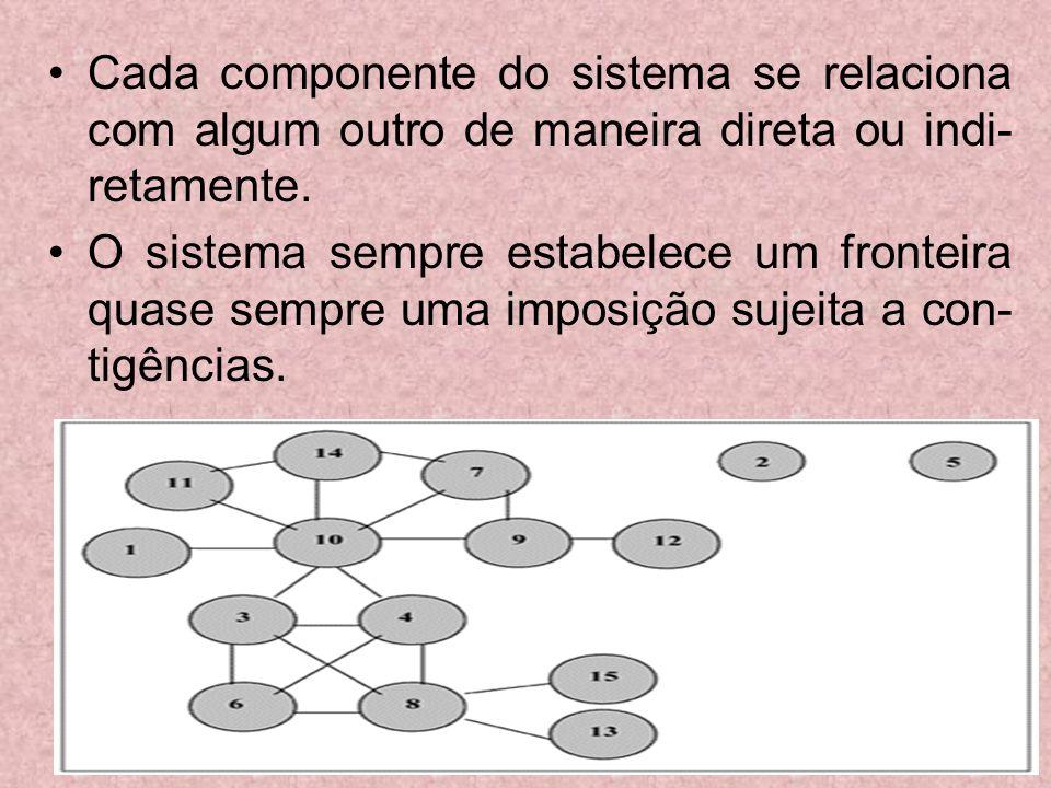 Cada componente do sistema se relaciona com algum outro de maneira direta ou indi- retamente. O sistema sempre estabelece um fronteira quase sempre um