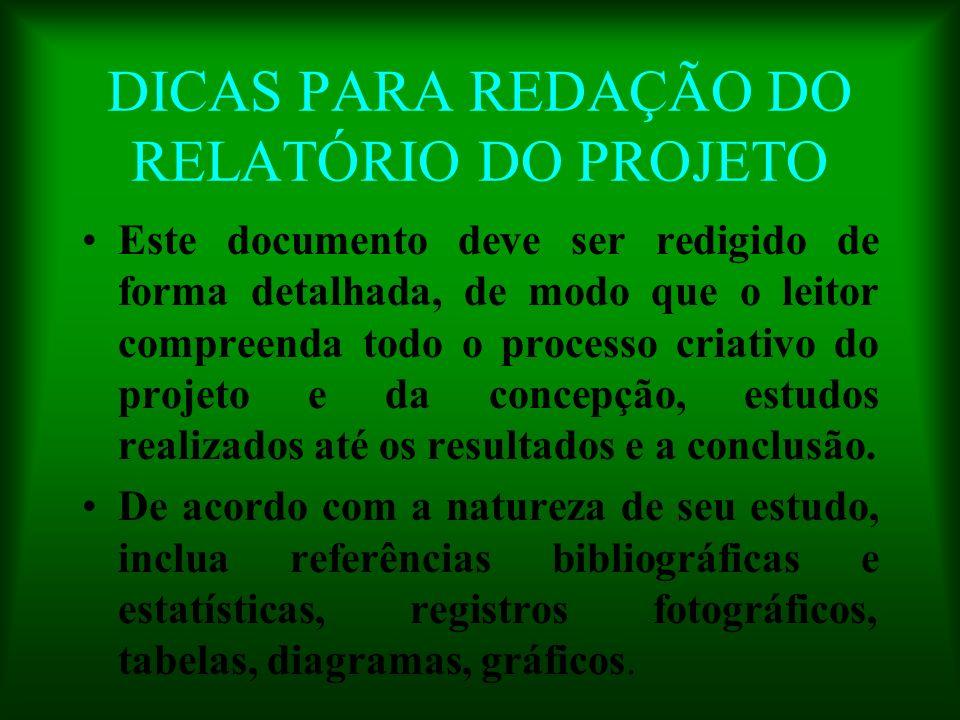 DICAS PARA REDAÇÃO DO RELATÓRIO DO PROJETO Este documento deve ser redigido de forma detalhada, de modo que o leitor compreenda todo o processo criati