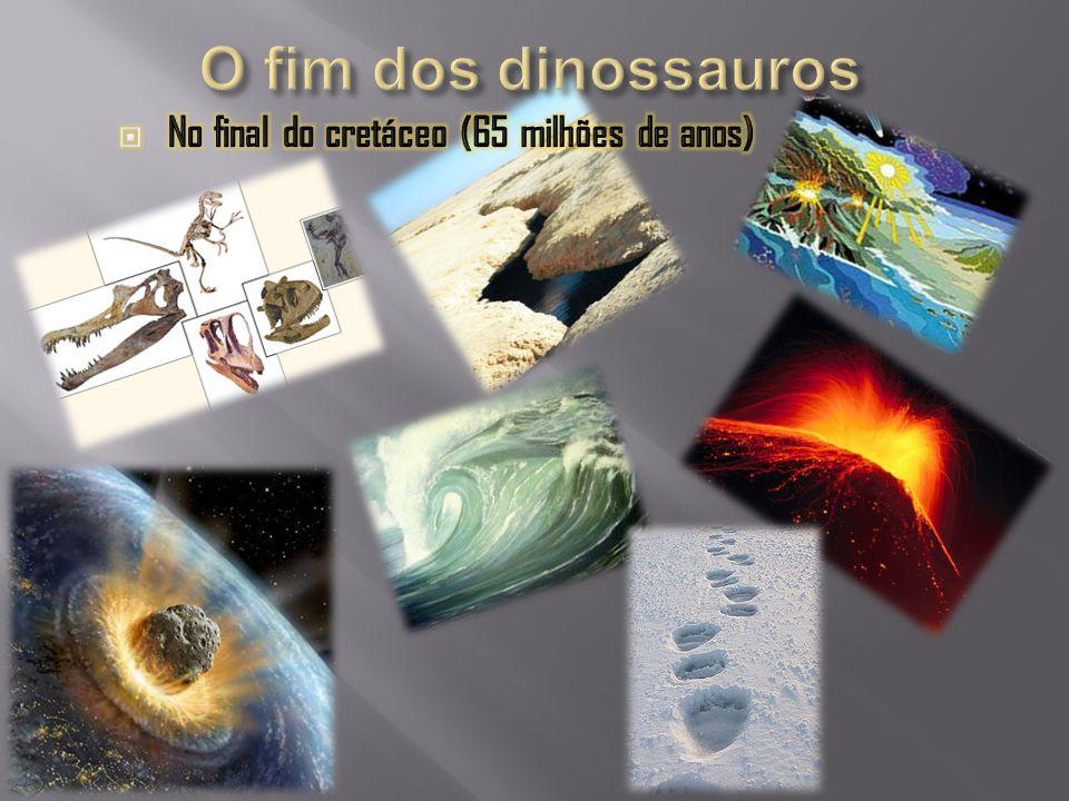Os primeiros mamíferos surgiram quando os dinossauros ainda dominavam a Terra Esqueleto do E.