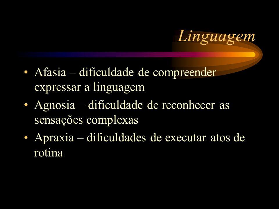 Linguagem Afasia – dificuldade de compreender expressar a linguagem Agnosia – dificuldade de reconhecer as sensações complexas Apraxia – dificuldades