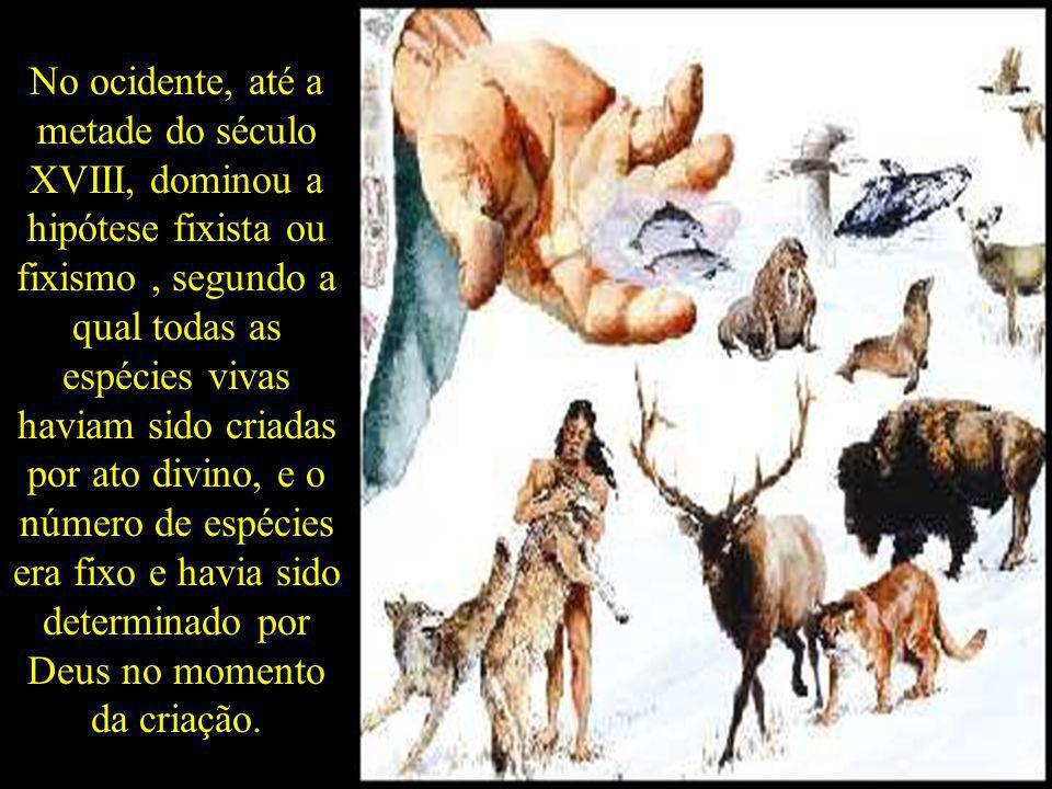 No ocidente, até a metade do século XVIII, dominou a hipótese fixista ou fixismo, segundo a qual todas as espécies vivas haviam sido criadas por ato d
