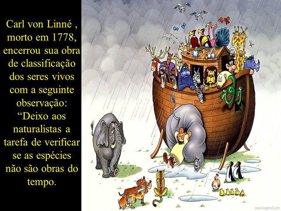 Carl von Linné, morto em 1778, encerrou sua obra de classificação dos seres vivos com a seguinte observação: Deixo aos naturalistas a tarefa de verifi