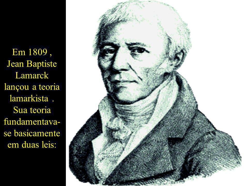 Em 1809, Jean Baptiste Lamarck lançou a teoria lamarkista. Sua teoria fundamentava- se basicamente em duas leis:
