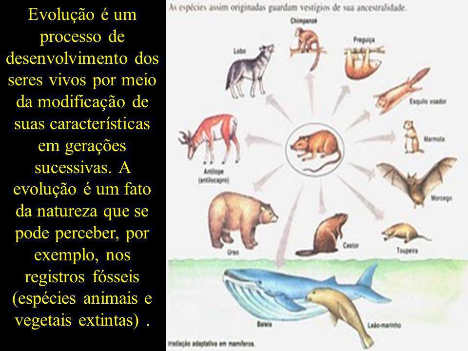 Evolução é um processo de desenvolvimento dos seres vivos por meio da modificação de suas características em gerações sucessivas. A evolução é um fato
