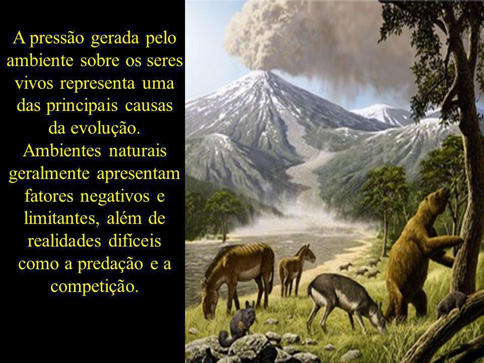 A pressão gerada pelo ambiente sobre os seres vivos representa uma das principais causas da evolução. Ambientes naturais geralmente apresentam fatores