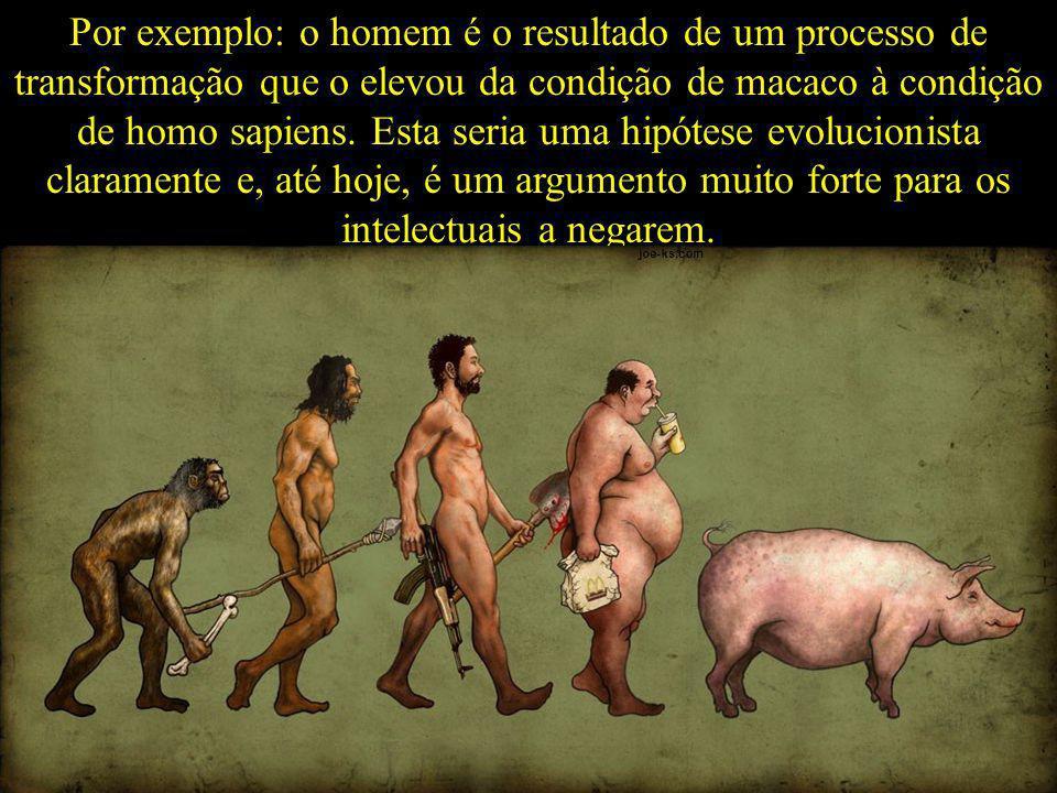Por exemplo: o homem é o resultado de um processo de transformação que o elevou da condição de macaco à condição de homo sapiens. Esta seria uma hipót