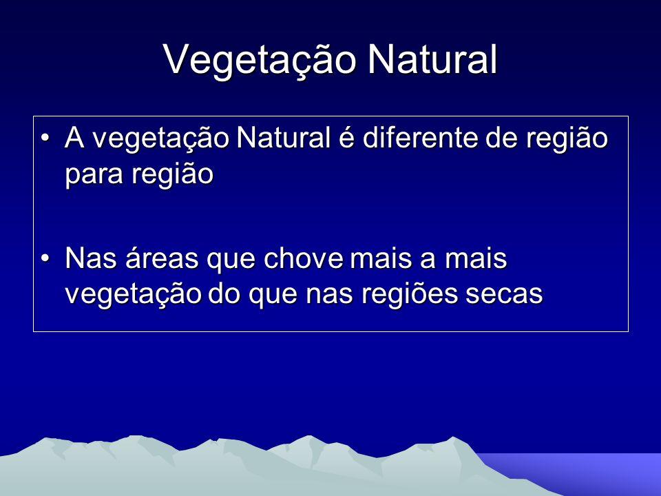 Vegetação Natural A vegetação Natural é diferente de região para regiãoA vegetação Natural é diferente de região para região Nas áreas que chove mais