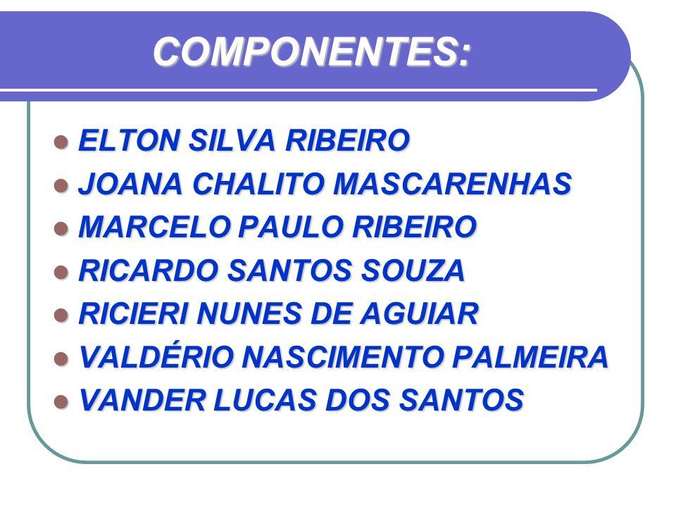 COMPONENTES: ELTON SILVA RIBEIRO ELTON SILVA RIBEIRO JOANA CHALITO MASCARENHAS JOANA CHALITO MASCARENHAS MARCELO PAULO RIBEIRO MARCELO PAULO RIBEIRO R