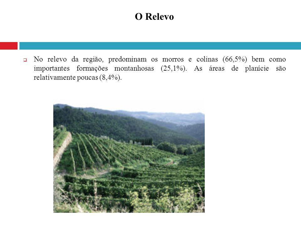 No relevo da região, predominam os morros e colinas (66,5%) bem como importantes formações montanhosas (25,1%). As áreas de planície são relativamente