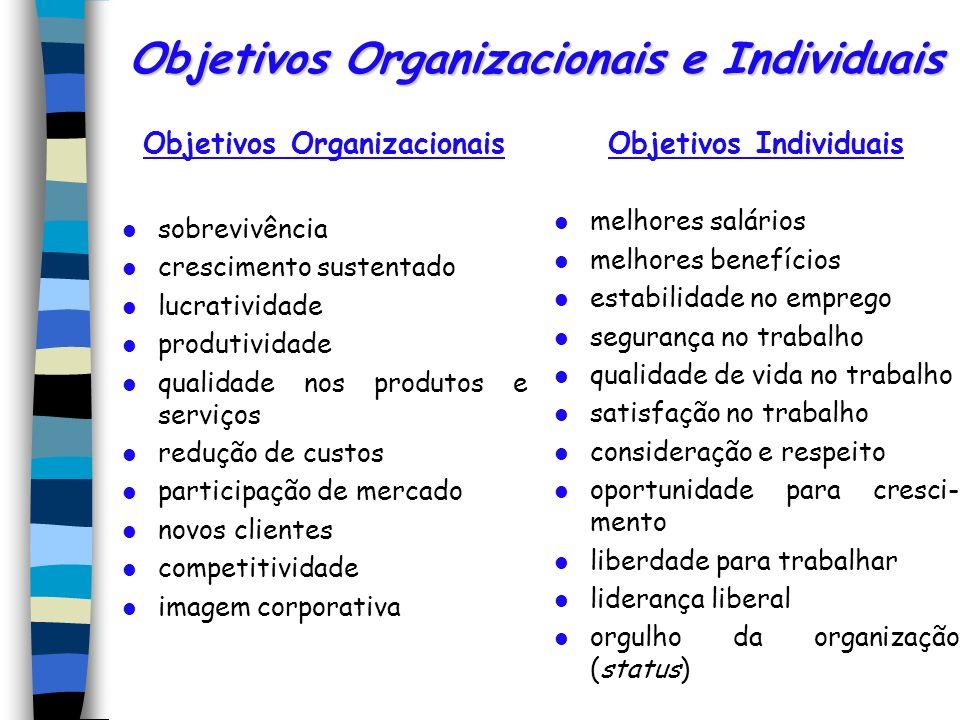 Objetivos Organizacionais e Individuais Objetivos Organizacionais sobrevivência crescimento sustentado lucratividade produtividade qualidade nos produ
