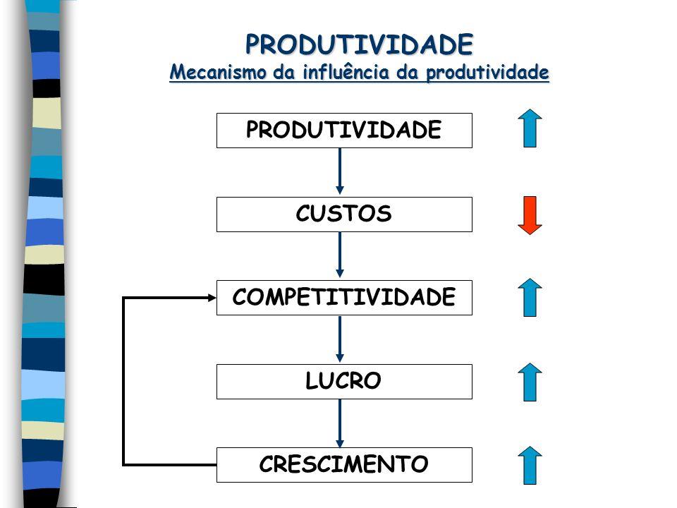 PRODUTIVIDADE Mecanismo da influência da produtividade CUSTOS COMPETITIVIDADE CRESCIMENTO LUCRO PRODUTIVIDADE