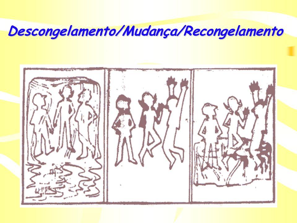 Desenvolvimento Organizacional (D.O.) SITUAÇÃO ATUAL SITUAÇÃO DESEJADA/ FUTURA PROCESSO DE D.O. (TRANSIÇÃO) CONFLITO DescongelamentoMudançaRecongelame