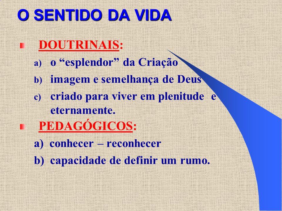 O SENTIDO DA VIDA DOUTRINAIS: a) o esplendor da Criação b) imagem e semelhança de Deus c) criado para viver em plenitude e eternamente. PEDAGÓGICOS: a
